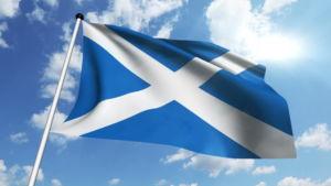 firma w szkocji